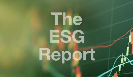 The ESG Report - formerly The Briefing Report